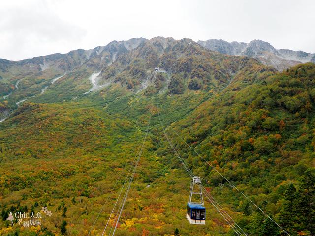 立山-6-搭纜車前往黑部平 (40).jpg - 富山県。立山黑部