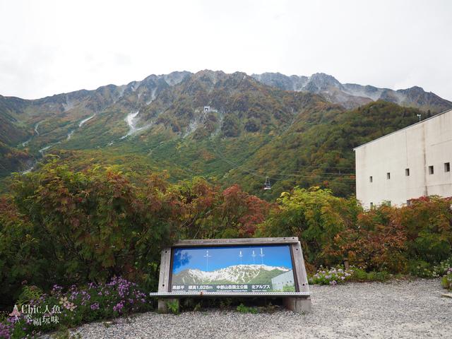立山-6-搭纜車前往黑部平 (23).jpg - 富山県。立山黑部