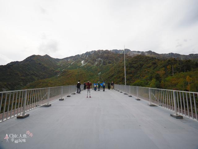 立山-6-搭纜車前往黑部平 (24).jpg - 富山県。立山黑部