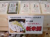 JR東日本上信越之旅。新潟市觀光-萬代橋。Mediaship。Pia萬代:新瀉市PIA萬代 (98).jpg