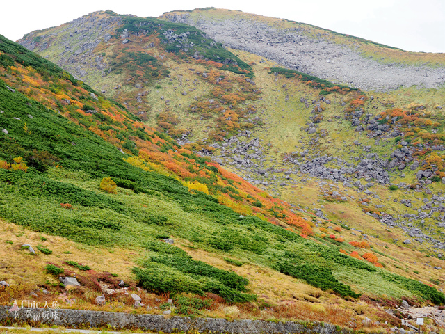 立山-4-室堂平 (144).jpg - 富山県。立山黑部