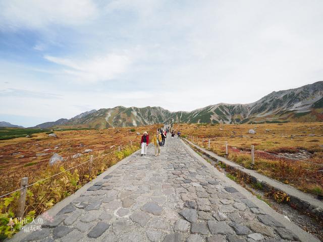 立山-4-室堂平 (22).jpg - 富山県。立山黑部