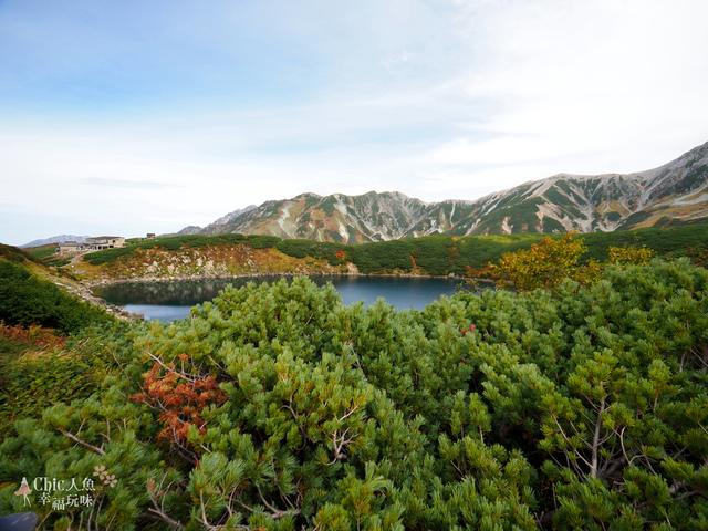 立山-4-室堂平 (40).jpg - 富山県。立山黑部