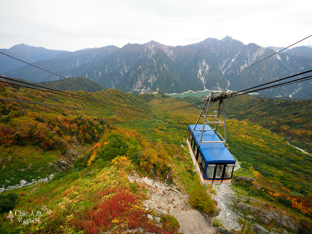 立山-6-搭纜車前往黑部平 (9).jpg - 富山県。立山黑部