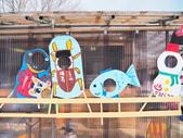 日光奧奧女子旅。湯西川溫泉かまくら祭り:湯西川溫泉-雪屋BBQ-第25 回雪屋祭-澤口會場-日景 (46).jpg