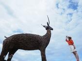 台東IG景點。比西里岸部落  牧羊女:比西里岸部落 (8).jpg