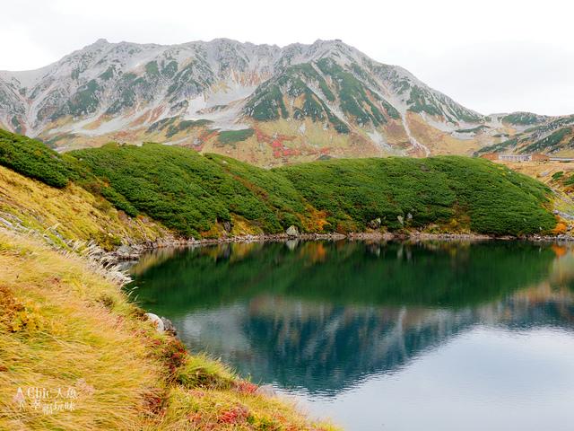 立山-4-室堂平 (104).jpg - 富山県。立山黑部