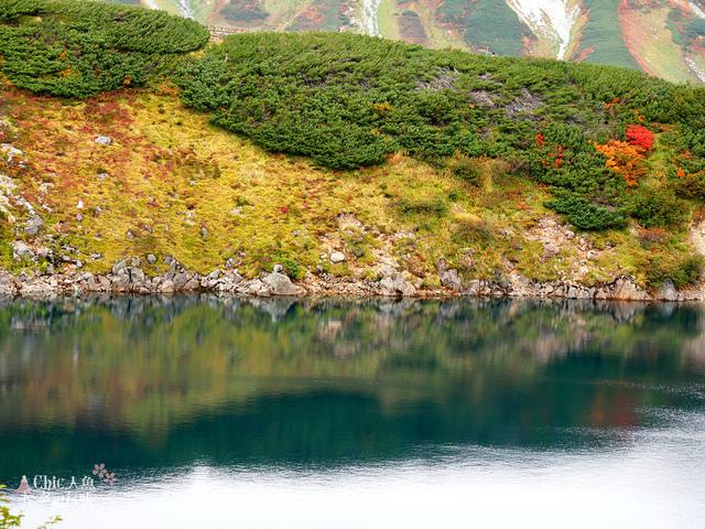 立山-4-室堂平 (117).jpg - 富山県。立山黑部
