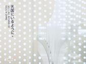 金沢海のみらい圖書館。金澤海之未來圖書館:金沢-海のみらい圖書館 (2).JPG