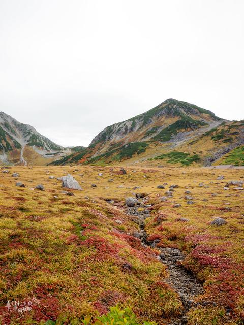 立山-4-室堂平 (24).jpg - 富山県。立山黑部