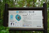 北海道道北。島旅。利尻島:利尻島-姬沼 (10).JPG
