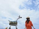 台東IG景點。比西里岸部落  牧羊女:比西里岸部落 (13).jpg