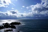 北海道道北。島旅。礼文島。澄海岬:礼文島-澄海岬 (15).jpg