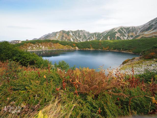 立山-4-室堂平 (41).jpg - 富山県。立山黑部