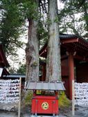 日光旅。日光東照宮:二荒山神社 (5).jpg
