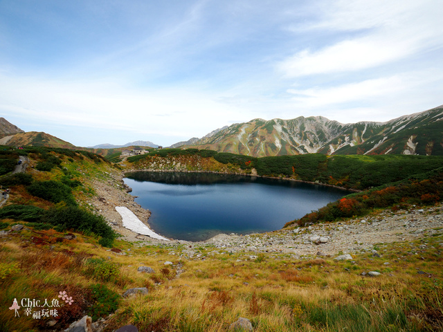 立山-4-室堂平 (31).jpg - 富山県。立山黑部
