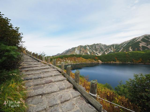 立山-4-室堂平 (44).jpg - 富山県。立山黑部