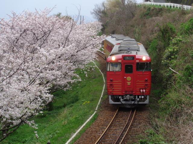 伊予灘ものがたり(春).JPG - 伊予灘旅物語觀光列車(伊予灘ものがたり)
