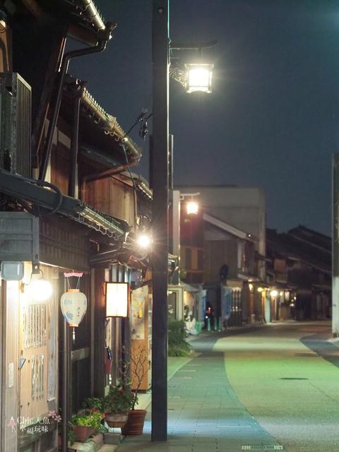 長良川鵜飼 (202).JPG - 岐阜県。鹈飼