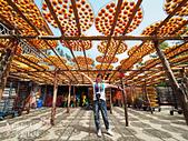 【國內旅遊】柿子紅了。最美的九降風橘@新埔衛味佳柿餅園:新埔衛味佳柿餅園 (43).jpg