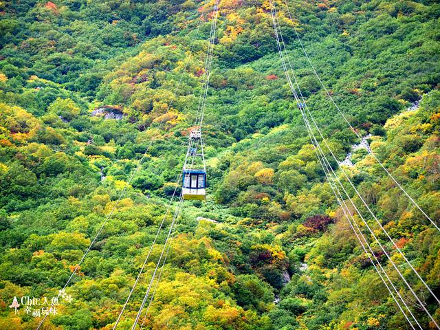 立山-6-搭纜車前往黑部平 (26).jpg - 富山県。立山黑部