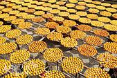 【國內旅遊】柿子紅了。最美的九降風橘@新埔衛味佳柿餅園:新埔衛味佳柿餅園 (67).jpg