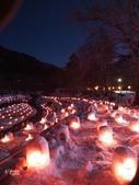 日光奧奧女子旅。湯西川溫泉かまくら祭り:湯西川溫泉mini雪屋祭-日本夜景遺產  (37).jpg