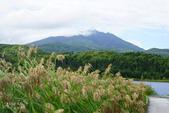 北海道道北。利尻島。白色戀人之丘:利尻富士町-OTARIMARI公園 (58).JPG