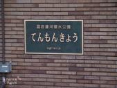 富山県。富岩運河環水公園(STARBUCKS  CAFE):富山市最美STARBUCKS-富岩運河環水公園 (1).jpg