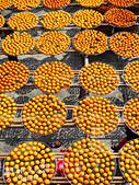 【國內旅遊】柿子紅了。最美的九降風橘@新埔衛味佳柿餅園:新埔衛味佳柿餅園 (62).jpg