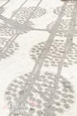 【國內旅遊】柿子紅了。最美的九降風橘@新埔衛味佳柿餅園:新埔衛味佳柿餅園 (26).jpg