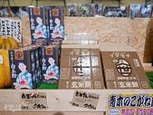 JR東日本上信越之旅。新潟市觀光-萬代橋。Mediaship。Pia萬代:新瀉市PIA萬代 (99).jpg
