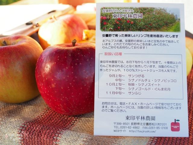 長野松川市東印平林農園採蘋果體驗 (150).jpg - 長野安曇野。東印平林農園蘋果園採蘋果りんご狩り