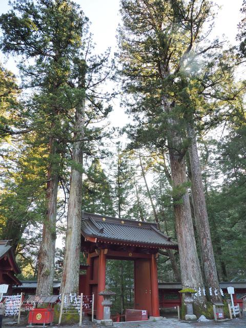 日光-二荒山神社 (18).jpg - 日光旅。日光東照宮