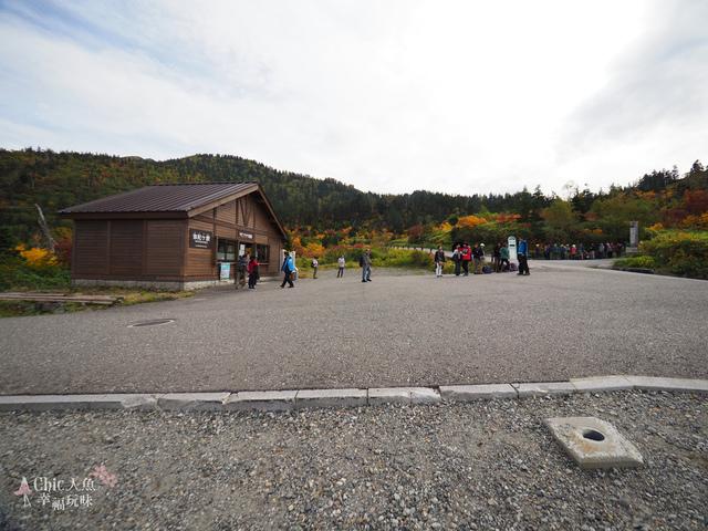 立山-3-彌陀之原 (77).jpg - 富山県。立山黑部