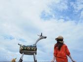 台東IG景點。比西里岸部落  牧羊女:比西里岸部落 (7).jpg