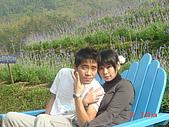 2007台中薰衣草:1554736869.jpg