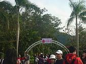 2008士林玫瑰季:1252363512.jpg