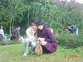 2008士林玫瑰季:1252363515.jpg