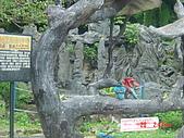 2007成豐夢幻公園:1939779122.jpg