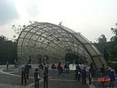 2008士林玫瑰季:1252363516.jpg