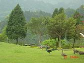 2007成豐夢幻公園:1939779126.jpg