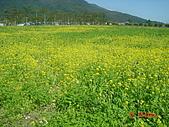 2009台東之旅:1920172449-dsc04960.jpg