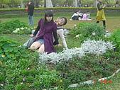 2008士林玫瑰季:1252363526.jpg