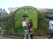 2008士林玫瑰季:1252363528.jpg