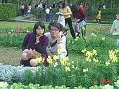 2008士林玫瑰季:1252363529.jpg