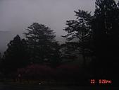 我在合歡山上遇見雪:DSC06429.JPG