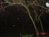 我在合歡山上遇見雪:DSC06437.JPG