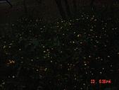 我在合歡山上遇見雪:DSC06438.JPG