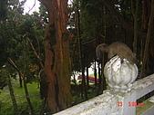 2008陽明山花季:1157834985.jpg